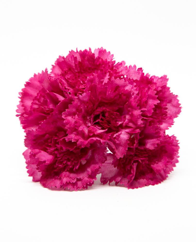 Flores BRAVÍA