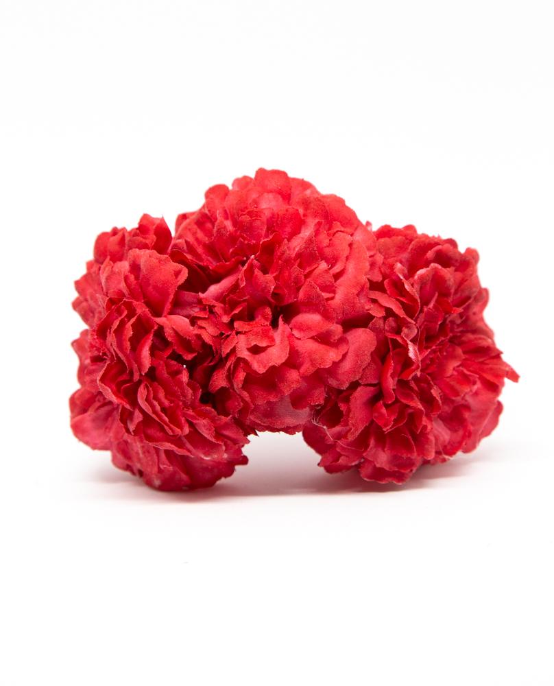 Flores SINTRA CARMÍN